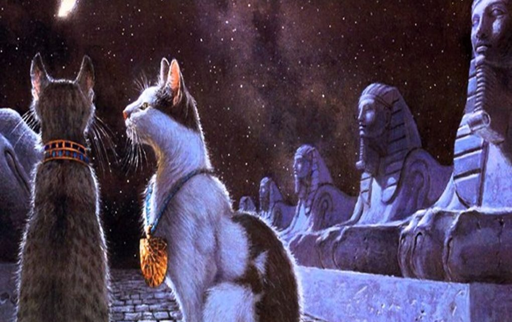 Inilah Kenapa Kucing Jadi Hewan Keramat di Mesir