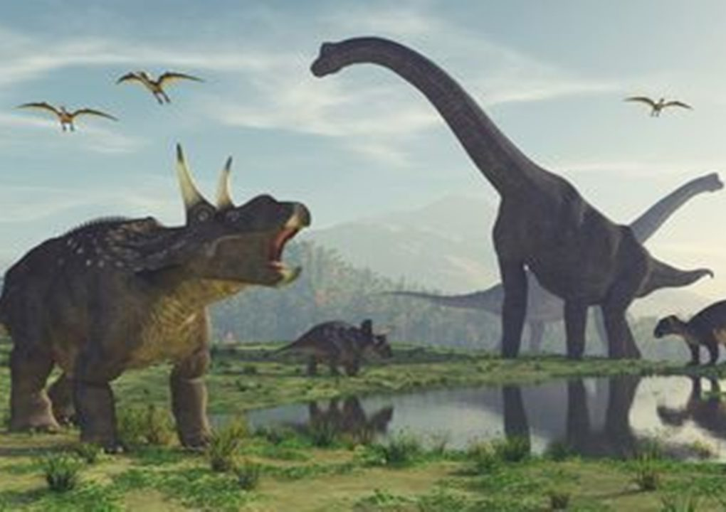 4 Hewan yang Hidup Jauh Sebelum Dinosaurus